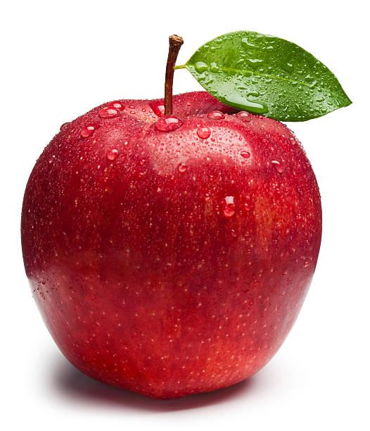 リンゴコンペ