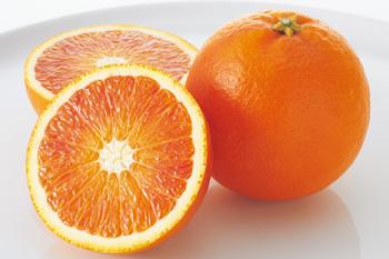 オレンジコンペ